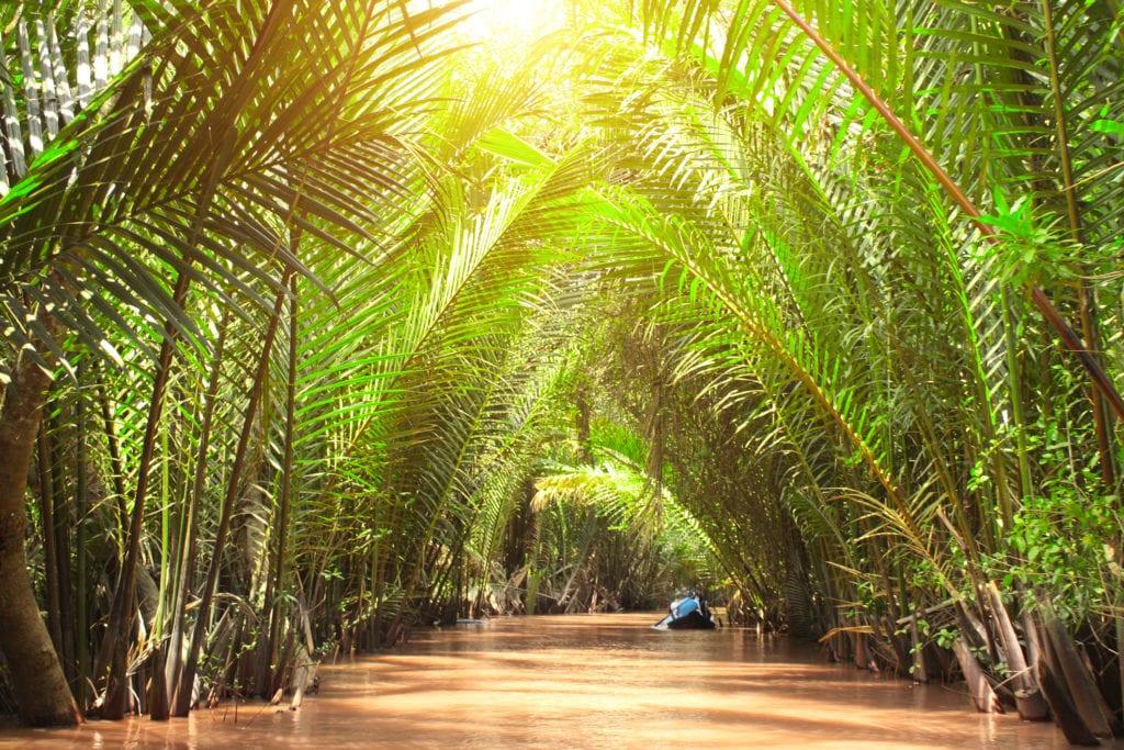 Rejs po kanałach Mekongu, Wietnam