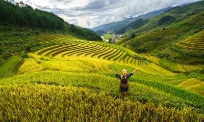Ryżowe pola w Mu Cang Chai, Wietnam