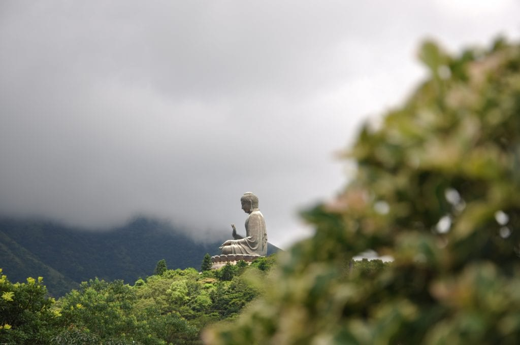 Budda Tian Tian,Hong Kong