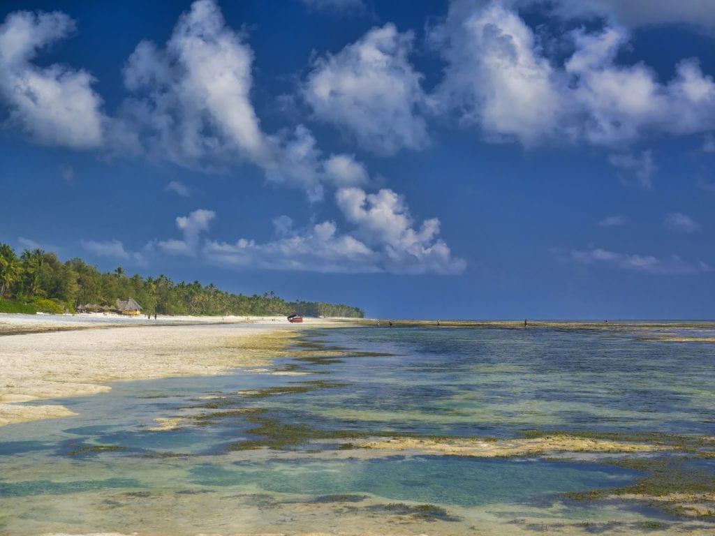 Plaża Bwejuu, Zanzibar