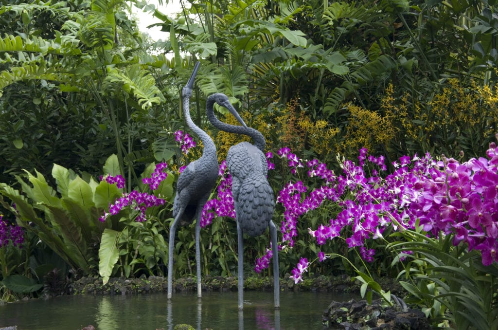 Ogród Storczyków w Singapurskim Ogrodzie Botanicznym, Singapur