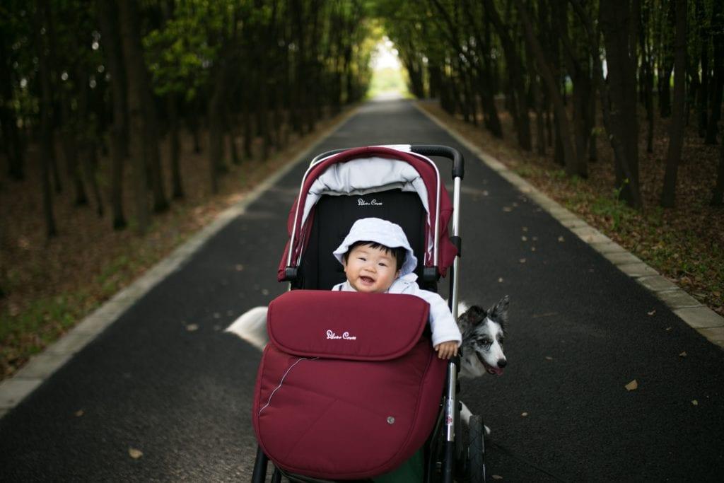 Wózek dla dziecka jest bezpłatnie nadawany do luku bagażowego
