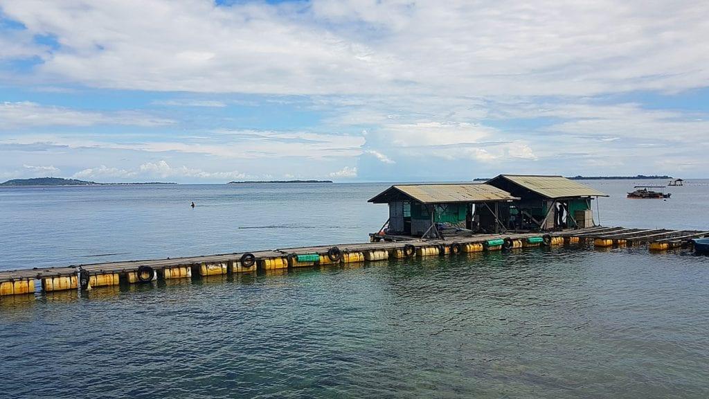 Farma pereł, Lombok Indonezja