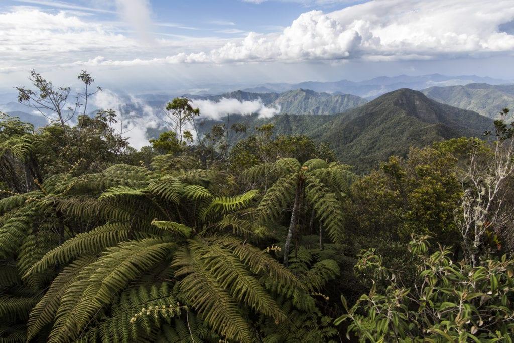 Góry Turquino, Kuba