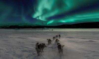 Najlepsze zorze polarne zobaczysz w NorwegiiashNajlepsze zorze polarne zobaczysz w Norwegii, fot.