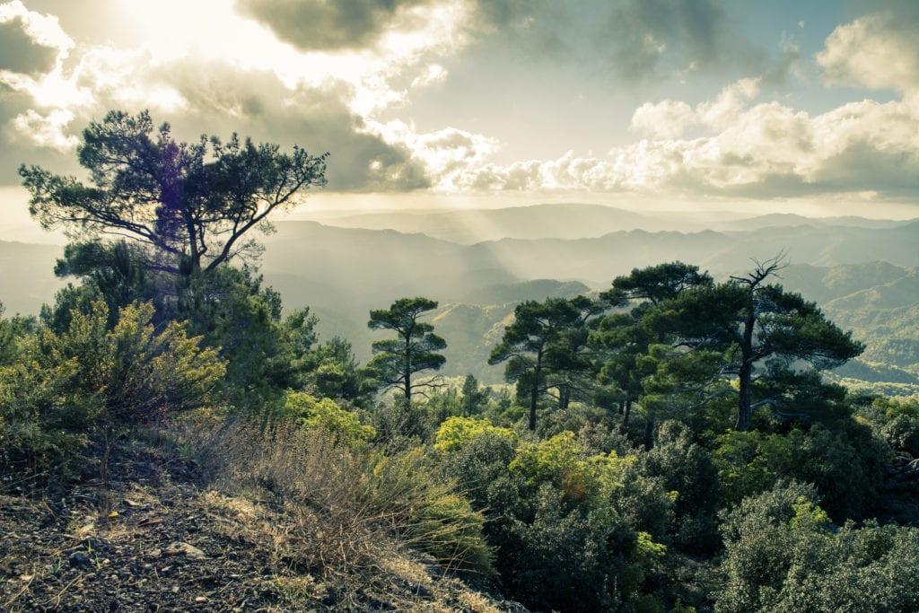 Pano Platres położone jest w górach Troodos, Cypr