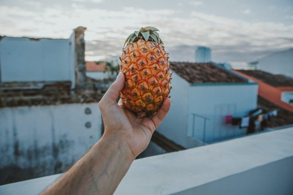 Na Azorach uprawia się ananasy, fot. Sandro Kradolfer Unsplash