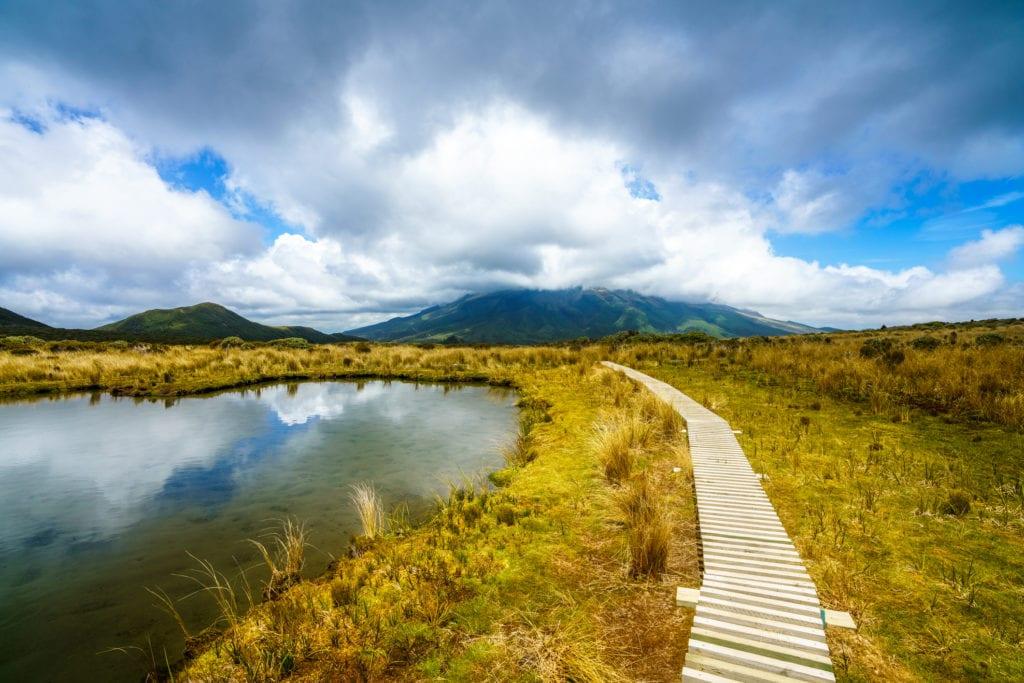 Szlak Mangorei Track prowadzi przez Park Narodowy Egmont,