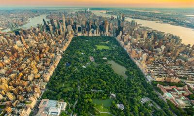 Central Park w Nowym Jorku, USA