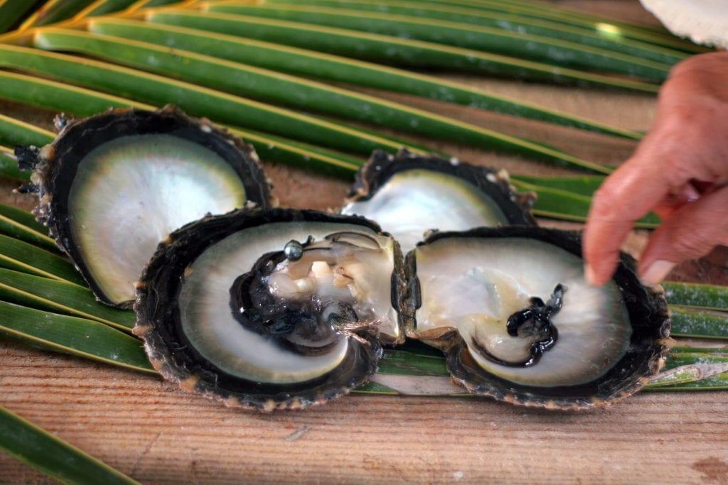 Czarne perły to popularny suwenir z Polinezji Francuskiej,