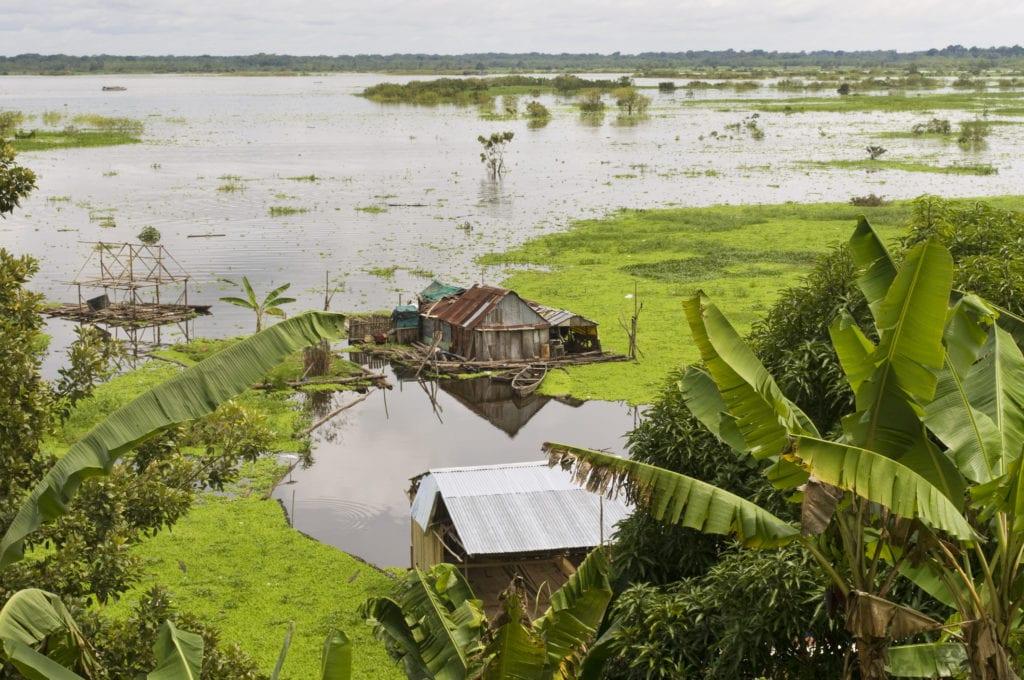Iquitos, życie na Amazonce, Peru