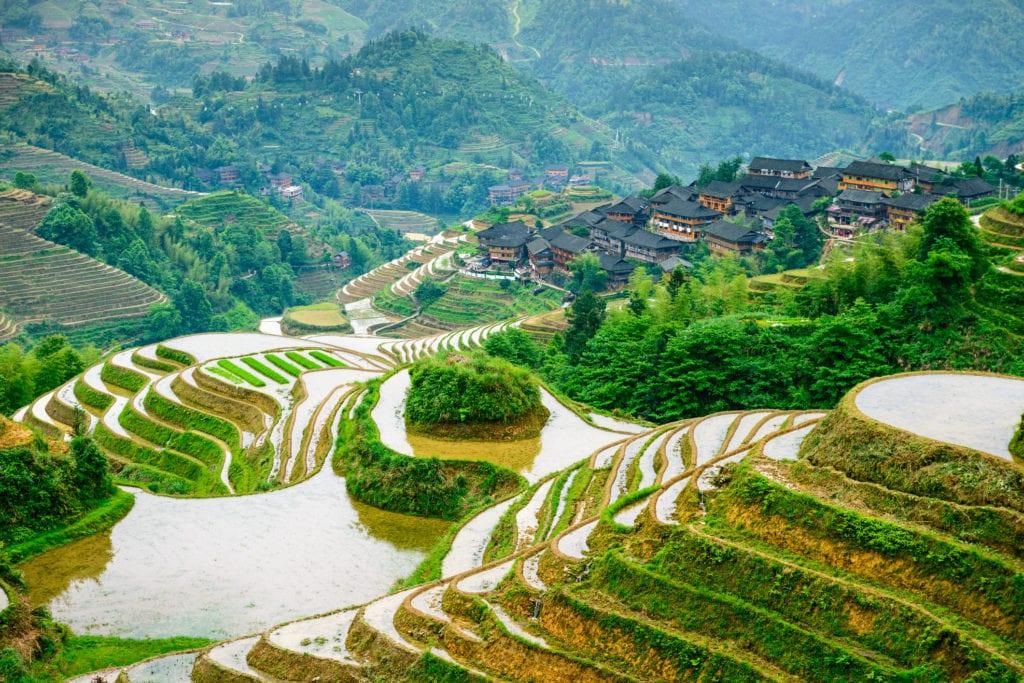 Pola ryżowe w okolicach Guilin, Chiny