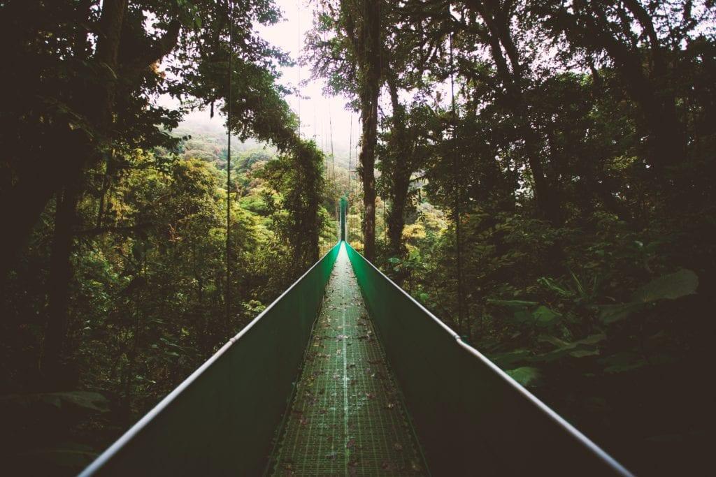Monteverde w Kostaryce, Ameryka Środkowa