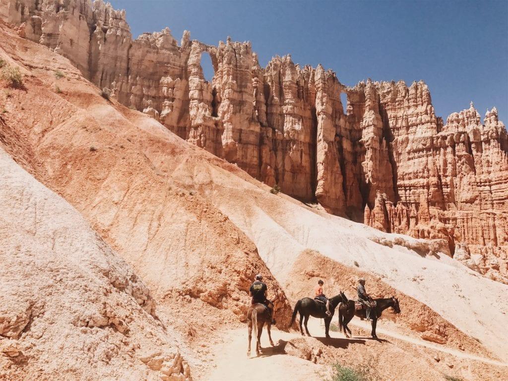 Park Narodowy Bryce Canyon można zwiedzać na końskim grzbiecie,