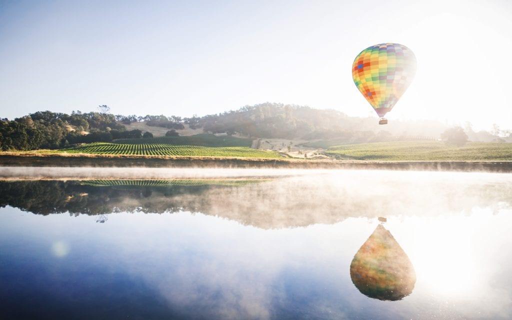 Winnice w Napa Valley, Kalifornia USA