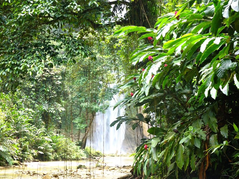Wodospad Tenaru na wyspie Guadalcanal, Wys[py Salomona