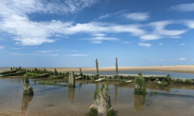Rezerwat przyrody Ainsdale,