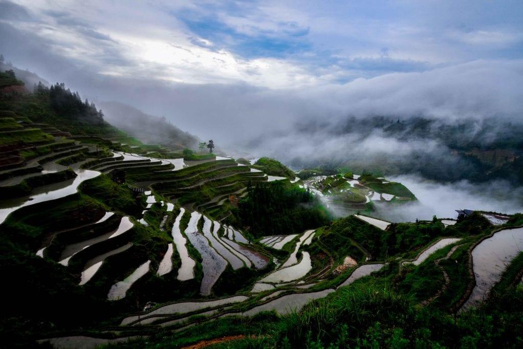 W Kuejczou znajdziesz malownicze pola ryżowe, Chiny