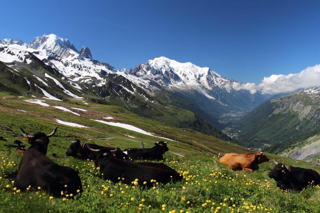 Okolice Mont Blanc,