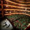 Koncert dla roślin w Barcelonie, fot. Reuters