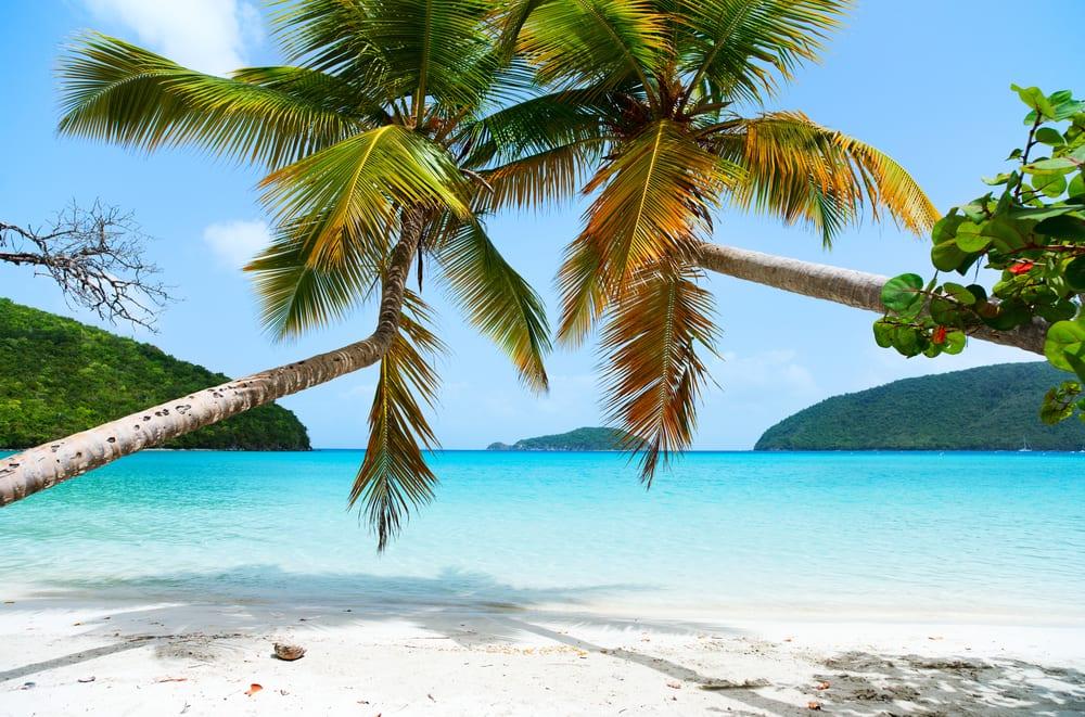 Maho Bay Beach, Wyspy Dziewicze Stanów Zjednoczonych, fot. BlueOrange Studio Shutterstock